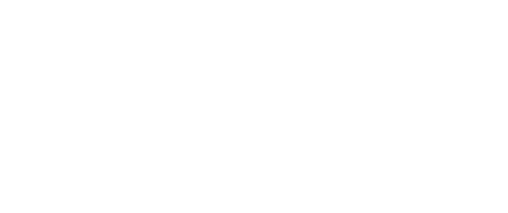 Sustainable Development Solutions Network logo